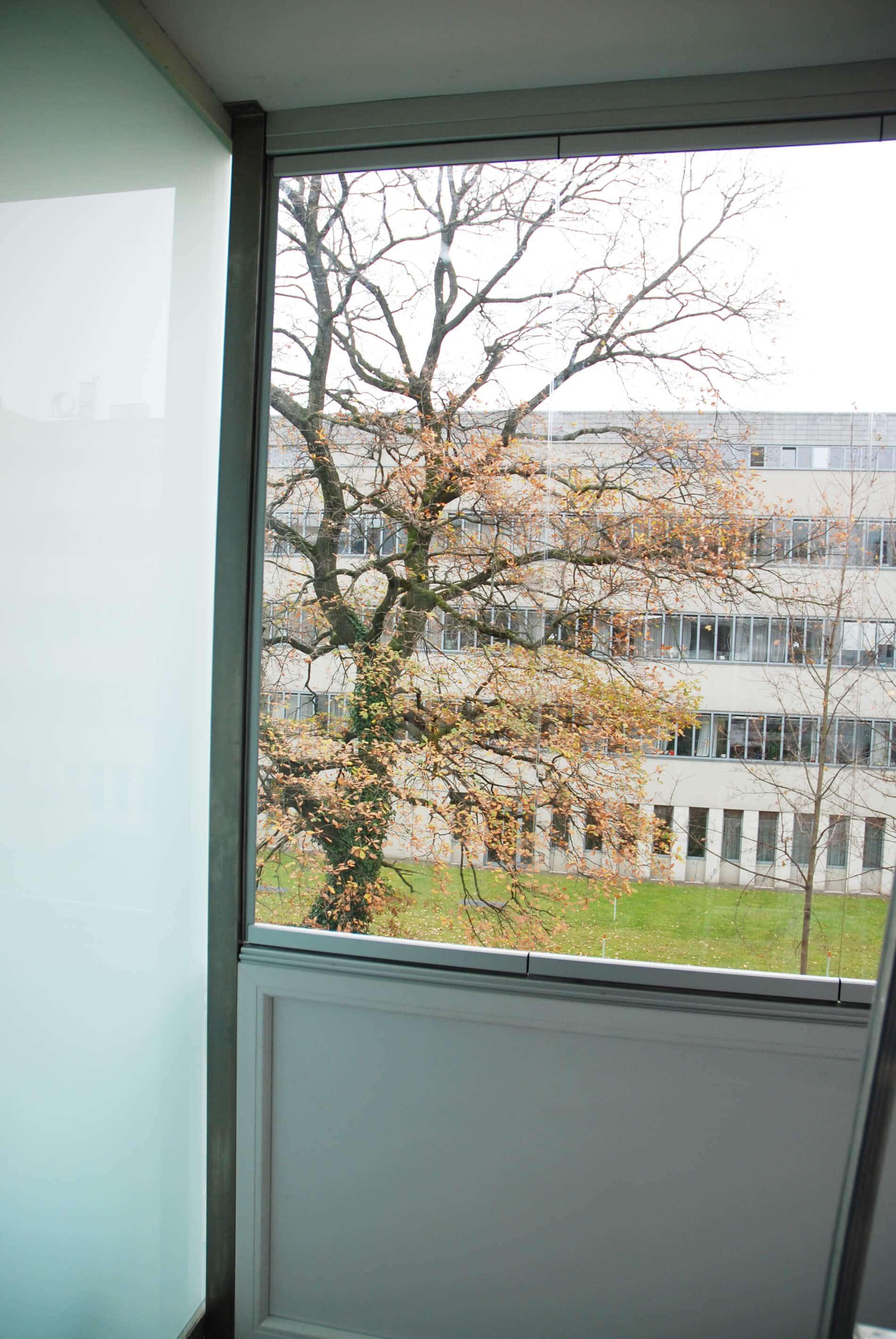 Wetterschutz Balkon transparent