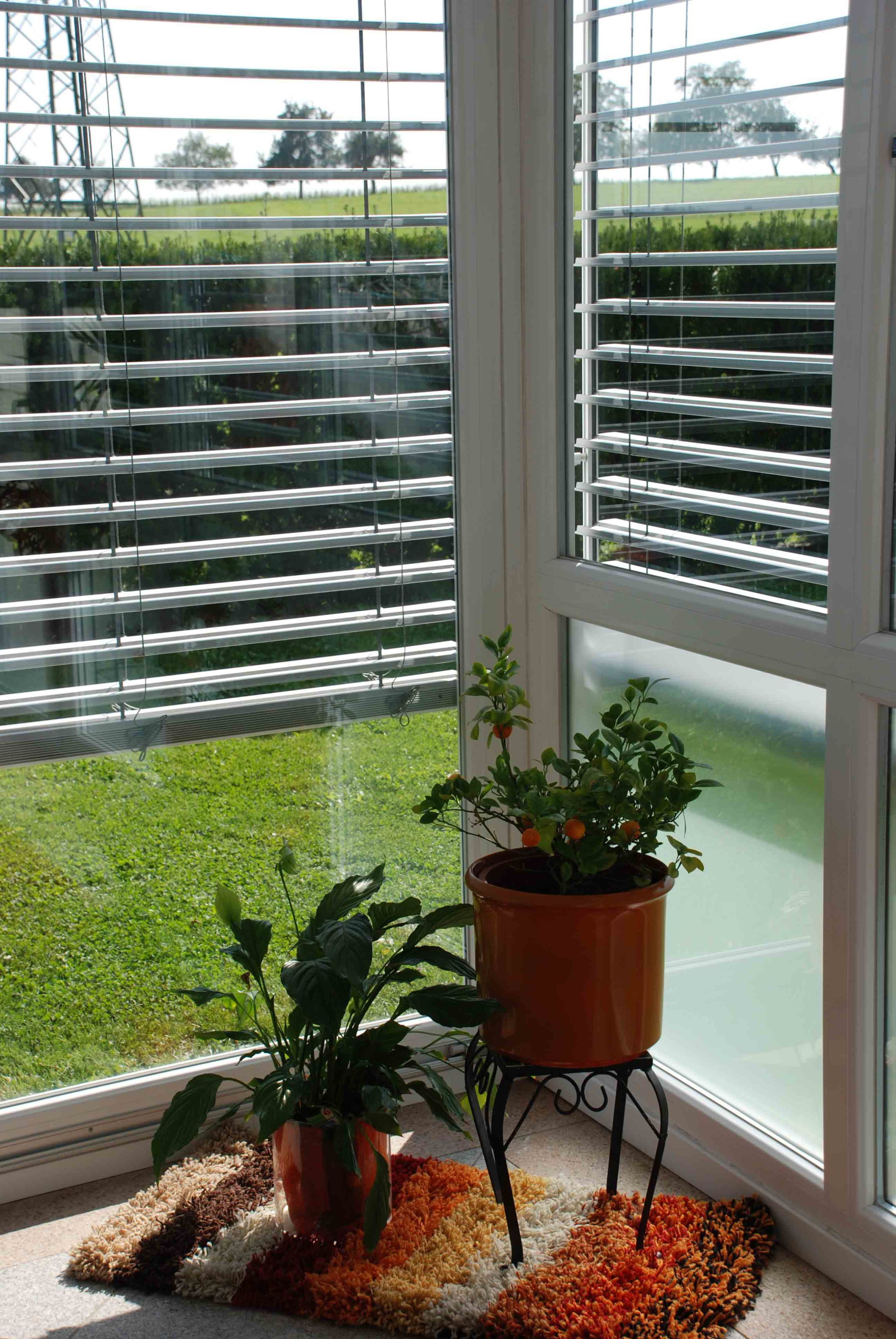 Wintergarten Inspiration Ideen