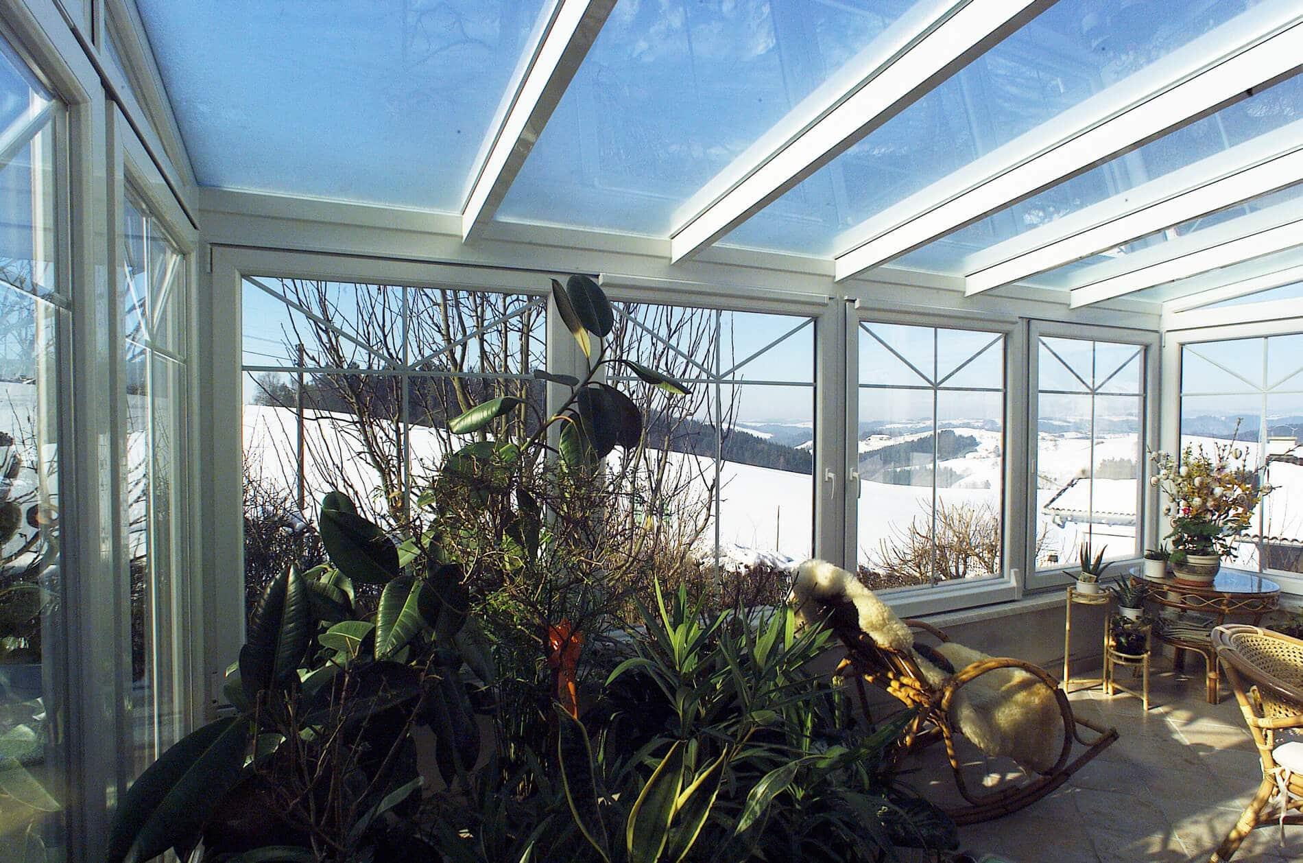 Wintergarten Pflanzenoase